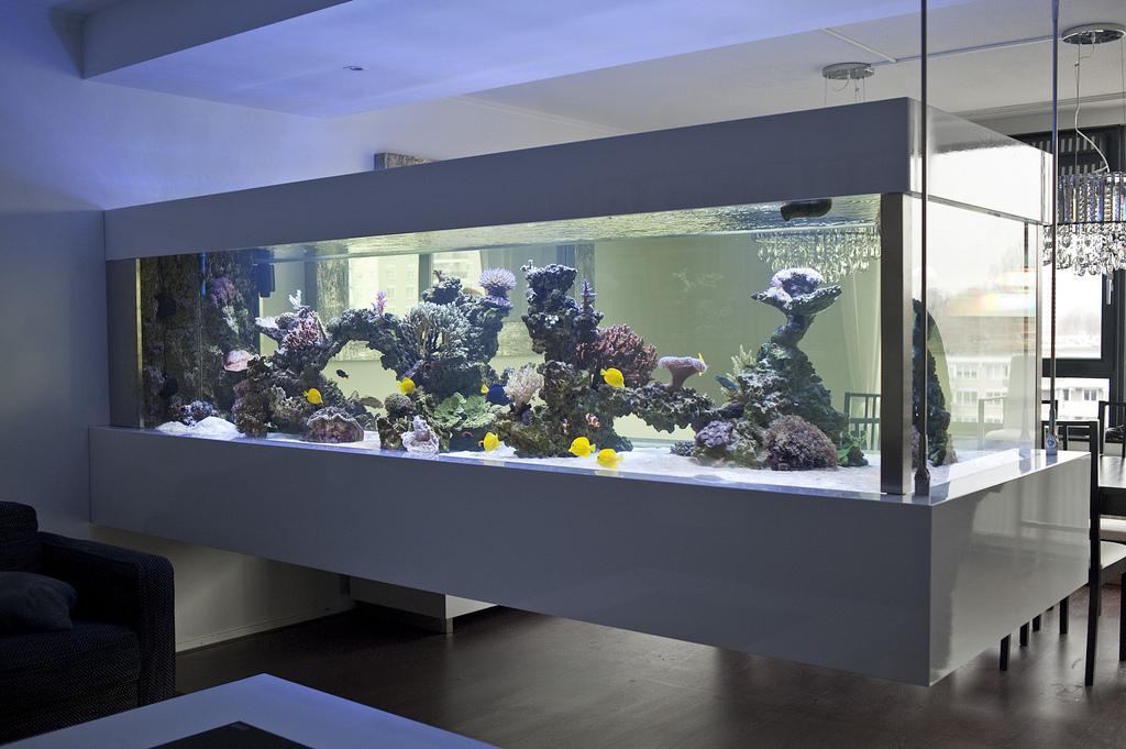 Aquarium Kitchen Bar